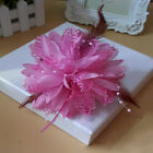 Bridal Flower Feather & Bead Fascinator Hair clip Brooch Pin Weddings party