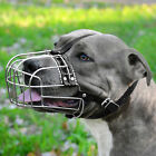 Metal Dog Muzzle PitBull AmStuff Pit Bull Wire Basket Adjustable Leather Straps