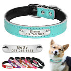 Personalised Dog Collar Leather Pet ID Collar Name Engraved Pink Red Blue Black