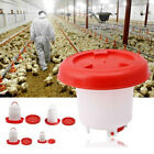 USA Robust Plastic Chicken Quail Poultry Hen Drinker Food Feeder 1.5 / 2.5 / 4L