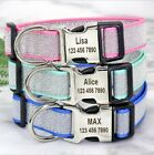 Bling Sequins Personalised Dog ID Collar Nylon Engraved Free for Small Large Dog