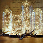 'Usb Plug In Led Micro Rice Wire Fairy String Lights Party 2m~10m Warm White
