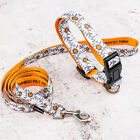 Dog Collar and Leash Set Pet Supplies Dog Harness Collar Leash Dogs Accessories