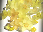 Acrylic Flower Beads 12 Lucite Daffodil Mix and Match Assorted Colors