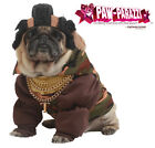 Mr T Pity The Fool Pet Dog The A Team Costume