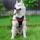 Husky Harness Soft Padded | New Luxury Leather Dog Harness for Husky Bestseller!