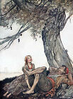 Arthur Rackham AESOPS FABLES THE TRAVELLERS & THE PLANE-TREE A4 or A5 Size