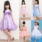 1 Girls Kids Princess Dress Embroidered Flower Party Dance  Wedding Costume