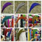 Wholesale 10-100pcs Lady Amherst Pheasant feather 32-36 inch / 80-90 cm select