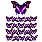 TRANSPARENT 3D BUTTERFLY 13, PRE-CUT or SHEET suncatcher scrapbooking craft