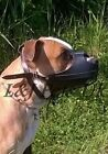 New Light leather Dog muzzle Amstaff and other similar snout