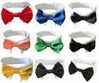 Small Dog Cat Pet Formal Bowtie Collar Tuxedo Bow Tie and Collar