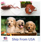 5sizes Dog pet puppy safety mouth cover muzzle adjustable stop bit chew bark USA