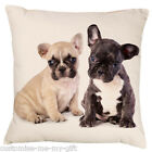 French bulldog Cushion | Love | Wedding |  add text |  Black & White dogs puppy