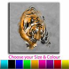 Painted Tiger Single Canvas Wall Art Picture Print 7O