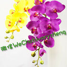 "WHOLESALE 12 STEMS 105cm 41.3"" LONG REAL TOUCH ARTIFICIAL PU SILK ORCHID FLOWER"