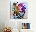 Abstract Colour Zebra Stretched Canvas Print Framed Kids Wall Art Decor Painting