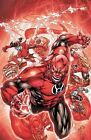 Red Lanterns - Blood and Rage Vol. 1 by Peter Milligan (2012, Paperback)