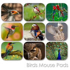 WILD BIRDS CUSTOM MOUSE PAD FRIENDS PERSONALIZED PHOTO FAMILY MOUSEPAD  (BM-01)