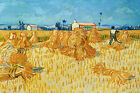 Take in In Provence Van Gogh Home Decor Canvas Print, choose your size.
