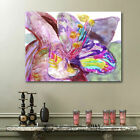 Purple Queen Flower Stretched Canvas Print Framed Wall Art Home Decor Painting