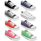Ladies Shoes Womens Canvas Lace Up Plimsoll Flat Gym Sneakers Trainer Pumps Size