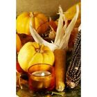 Amish Harvest Fragrance Oil Candle Making Supplies FREE SHIPPING