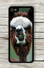 ALPACA FAMILY FUNNY PERSONALITY WINNER #2 CASE FOR iPHONE 4 5 5C 6 -rcm9Z