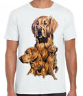 New Womans Mens Unisex Golden Retriever Dog Graphic Printed White Cotton T Shirt