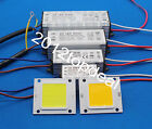 Real Watt COB High Power 20W 30W 50W 220V 110V LED lamp Integrated Chip lamp