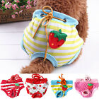 Female Adult Dogs Sanitary Pants Diapers Physiological Nappy Underwears Dainty