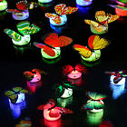 4pcs Colorful Changing Butterfly LED Night Light Lamp Room Party Desk Wall Decor