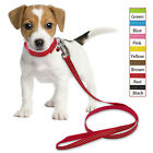 Polka Dots Nylon Pet Puppy Dog Collars and Leash Set for Small Large Dogs S M L