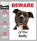 BEWARE OF THE STAFFY CORREX SIGN A5 A4 A3 Weatherproof laminated