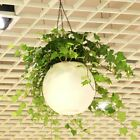 Large Hanging Containers Decorative Resin Flower Plant Pot Ball Shape Basket