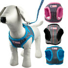 Soft Small Dog Puppy Harness Vest and Lead Leash for Chihuahua 3 Colors S M L XL