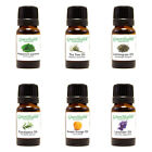 GreenHealth 5ml Top 50 Essential Oils Free Shipping No Quantity Limit