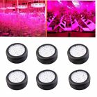 LOT 150W UFO LED GrowLight IR UV Spectrum HydroponicHydro Plant Growing Lamps EK