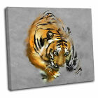 Abstract Painted Tiger Canvas Wall Art Print Framed Picture 7 Gallery Grade TAB