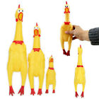 Внешний вид - Squeeze Shrilling Screaming Rubber Chicken Pet Dog Bite Toy Squeaker Chewing Toy