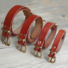 Genuine Studded Leather Dog Collars Top Quality for Medium Large Dogs Pitbull