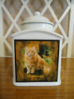 Pet Memorial Urn Personalized, Personalised, Cat, Dog, *FOREVER IN MY HEART*