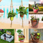 Succulent Planter Flower Plant Bonsai Pot Garden Herb Trough Box Bed Basket DIY
