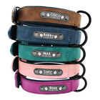 Soft Padded Leather Personalized Dog Collar Name ID for Small Medium Large Dogs
