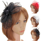 Flower Feather Bead Hair Clips Fascinator Headband Corsage Bridal Hairband Hot
