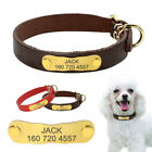 Personalized Chihuahua Collar Small Dogs Puppy Custom ID Named Engraved Collar