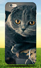 VIEW CAT FOLD GREY FUR HARD BACK CASE FOR APPLE IPHONE PHONE