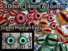 Kyпить Taxidermy Glass Dragon, Doll, Teddy Eyes, Human Green 10mm, 14mm, 16mm на еВаy.соm