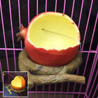 Cute Bird Feeding Plate Pigeon Coop Fowl Drinker Bowl Poultry Water Drinking Cup