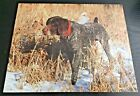 "8x10 GLOSSY PHOTO PRINT "" Beautiful Hunting Dog "" vintage 1989 MINT"